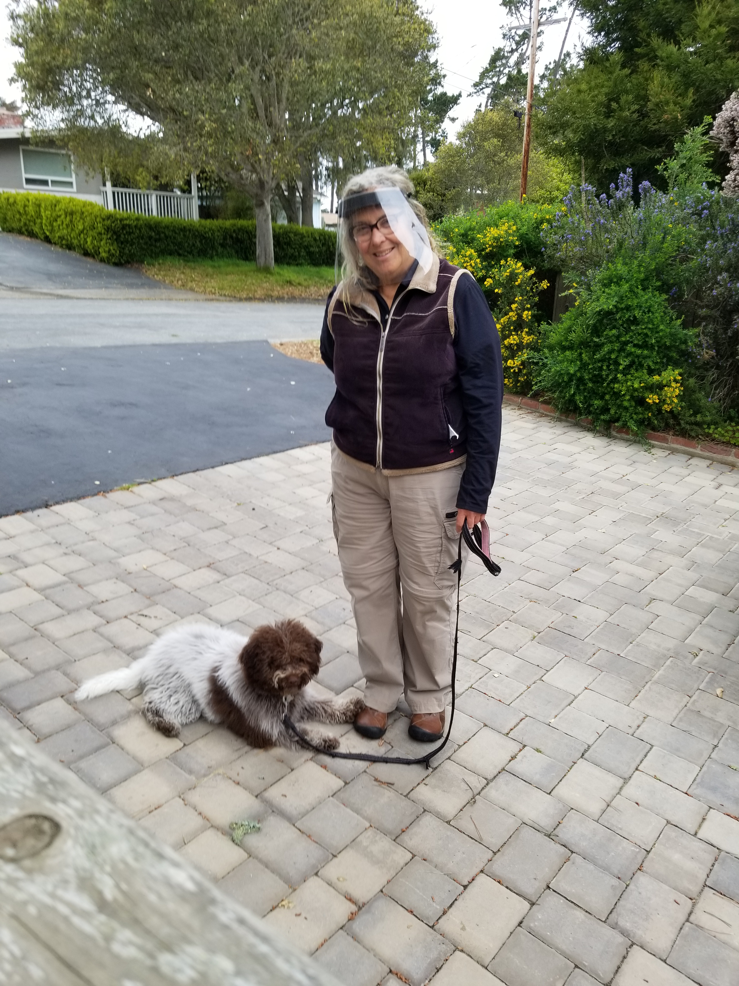 Covid-19 Dog Walking & Training Protocols Pacific Grove CA